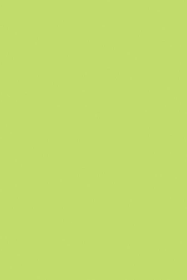 康洁绿QXJ008